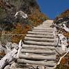Post ladder through sand dunes. New Zealand images.