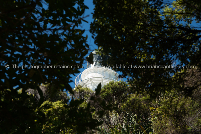 East Cape lighthouse framed by greenery