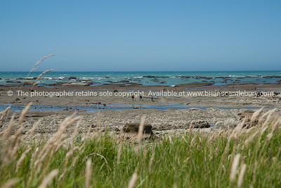 Te Araroa beachfront. New Zealand images.