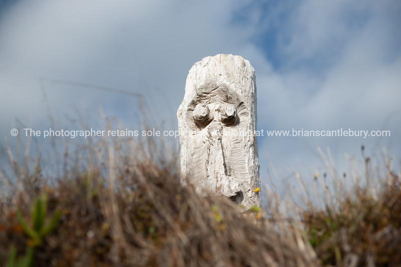 Driftwood Totem on Ohope dunes.