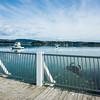 Ohope wharf on Ohiwa Harbour. New Zealand images.
