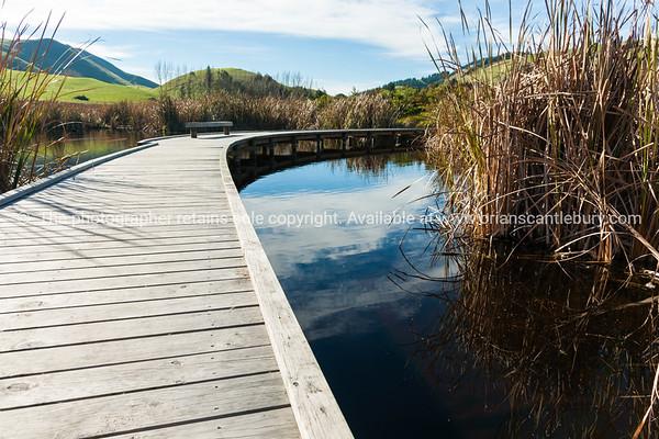 Walkway through Pekapeka Wetlands, Hawke's Bay, NZ