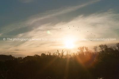 Sunset Clive Wetlands, Napier, NZ