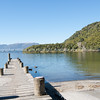 Jetty on Lake Tarawera.