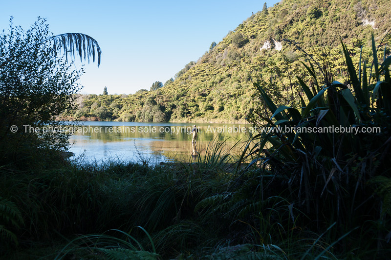 Fisherman on Lake Tarawera