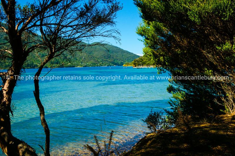 Bay in Marlborough Sounds.