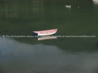 Dinghy in Kenepuru Sound. New Zealand images.