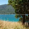 Queen Charlotte Track passes the turquoise water in another Marlborough Sounds bay. New Zealand photographic stock images. South Island.