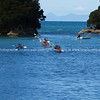 Golden Bay, kayakers return. New Zealand image.