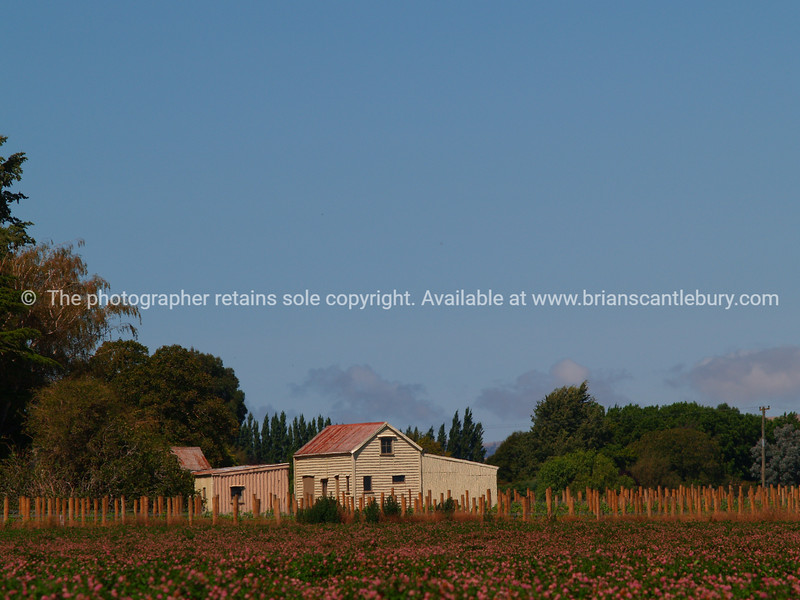 Farm buildings in rural New Zealand. New Zealand images.