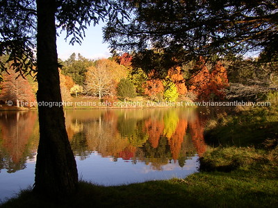 McLaren Lake autumn reflections. New Zealand Images.