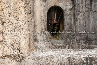 Victoria battery old concrete building remains in Karangahake Gorge. New Zealand images.