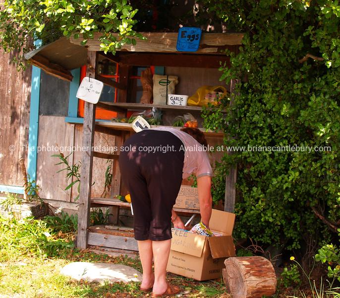 Roadside produce stall. New Zealand image.