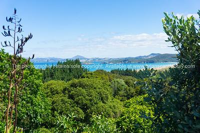 Scenic Tutukaka Coast