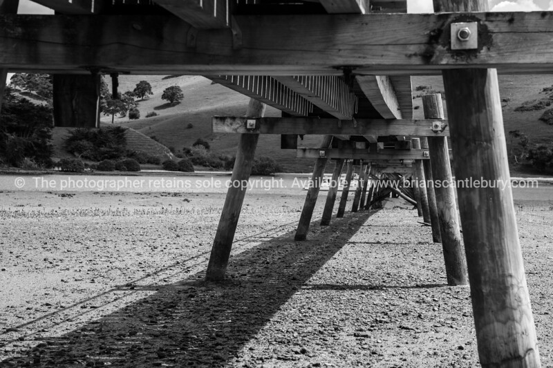 Black and white, under the jetty, Port Albert, Northland. New Zealand images.