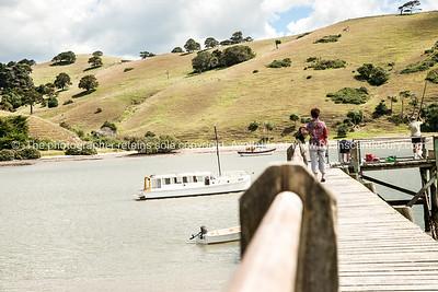 Port Albert, Northland. New Zealand images.