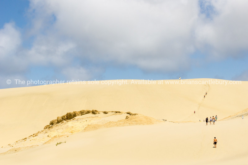 Te Paki Sand Dunes, enormous white dunes a favorite tourist attraction and fun place Northland, New Zealand