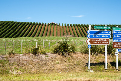 Northland, New Zealand. South Pacific Images.