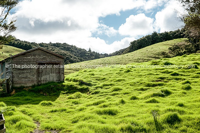 Rural scene, Northland. Field over rustic gate and fence.