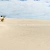 Stunning Mangwhai Heads sand dunes