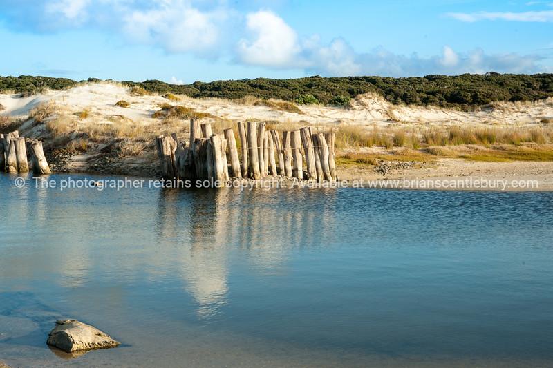 Beach lagoon, Karikari in Far North, New Zealand images.