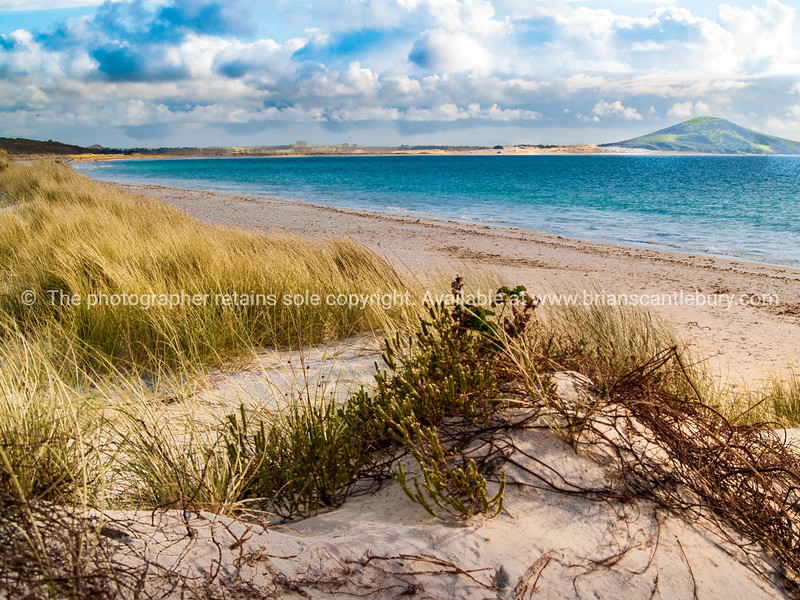 Karikari beach and Puwheke, Northland.