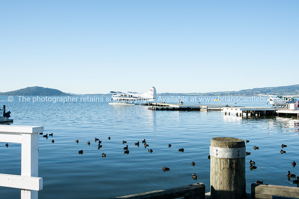 Lake Rotorua waterfront with float plane