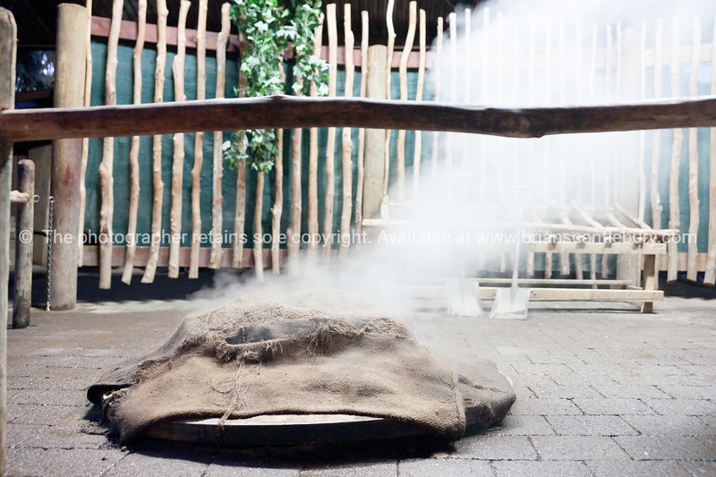 Steam rises from traditional Maori oven. Tamaki Maori Village