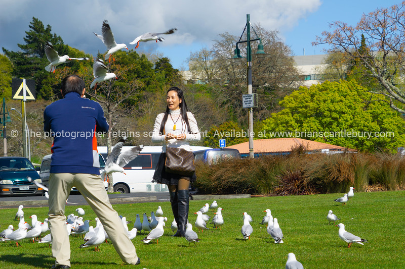 ROTORUA NEW ZEALAND - 2018; Released; NO, for editorial or personal use only please.