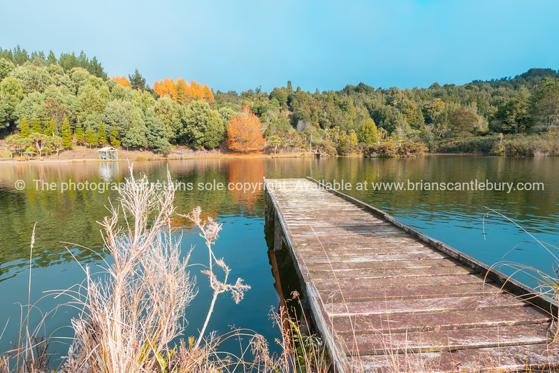 Rustic wooden pier leading int water of small lake