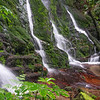 Waterfall surrounded by New Zealand native bush
