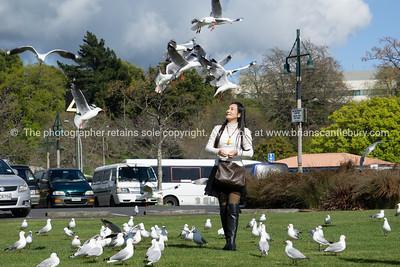 ROTORUA NEW ZEALAND - 2018;