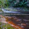 River in Pyes Pa Gorge Road betwrrn Tauranga and Rotorua.