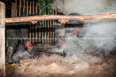 Steam rises from traditional Maori oven. Tamaki Maori Village