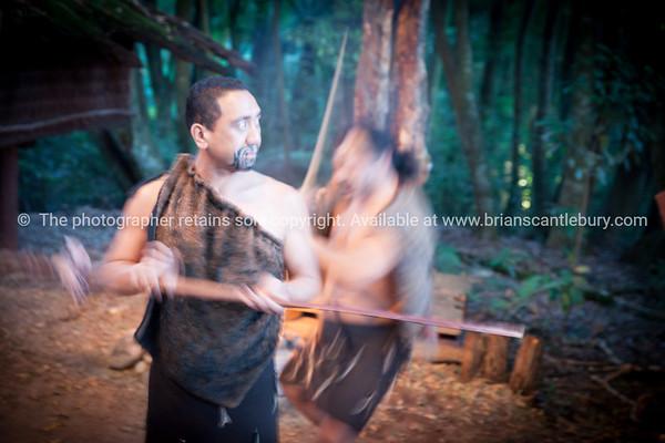 Warrior demonstration. Tamaki Maori Village.