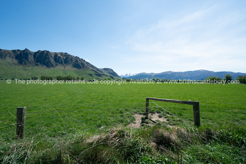 Distant mountain s beyond emerald green South Island pasture