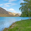 Clutha River with sun on scenic grassy slopes and flat shore with birch trees lime green spring leaves and turquoise river under blue sky
