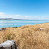 Turquoise blue water of snow feed scenic Lake Pukaiki