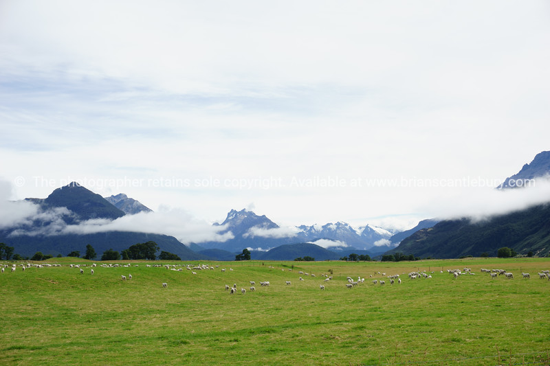 South Island Scenic  (68 of 149)
