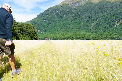 Walking the track through a Southern Alps valley.