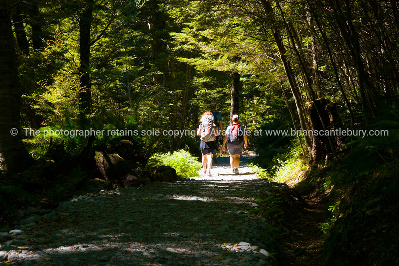Walkers on Routeburn Track.