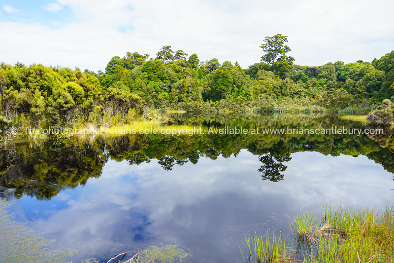 Lake Wilkie in Southland New Zealand