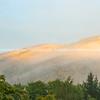 Sun through morning mist on hills beyond low trees
