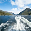 Doubtful Sound, Milford NAtional Park  (97 of 97)