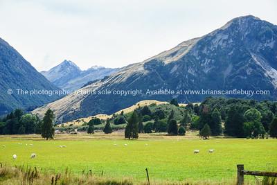 Farmland at foot of Southern Alp mountain range.