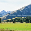 South Island Scenic  (77 of 149)