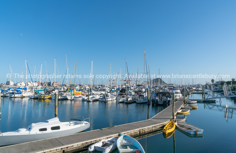 Pleasure boats moored in marina with Mount Maunganui landmark in distance through boat masts.