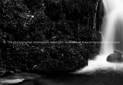 Tauranga, McLaren Falls Park (67 of 89)-2