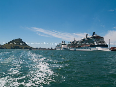 Two cruise ship berthed at Port of Tauranga.