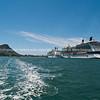 Tauranga Harbour-70